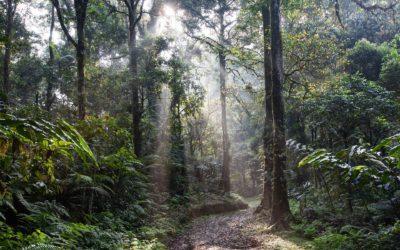 Memorable Moments – Andrea Nolon – Costa Rica