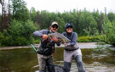 Alaska – Bears gorging on whales, helicopters, fishing and tying flies | N. Italy | A hotel without a name in Mexico